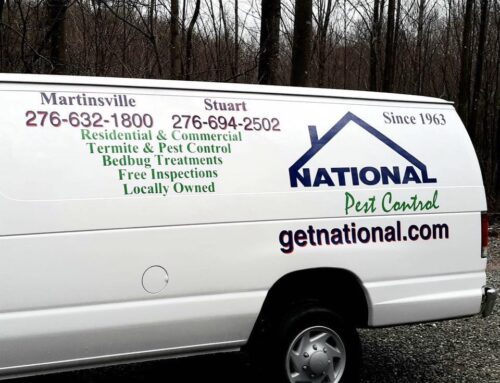 We kill, Bed Bugs, Guaranteed!